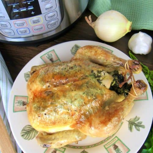 roasted chicken on plate with instant pot in background