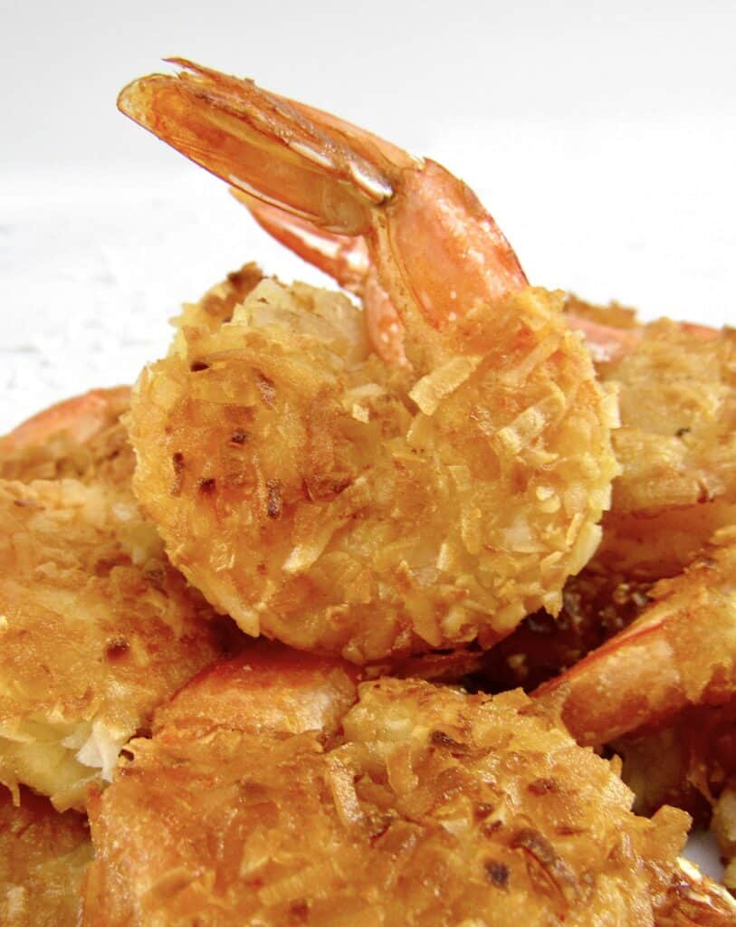 closeup of coconut shrimp