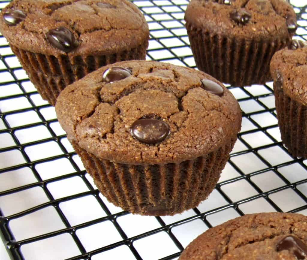 closeup of chocolate muffins on cooling rack