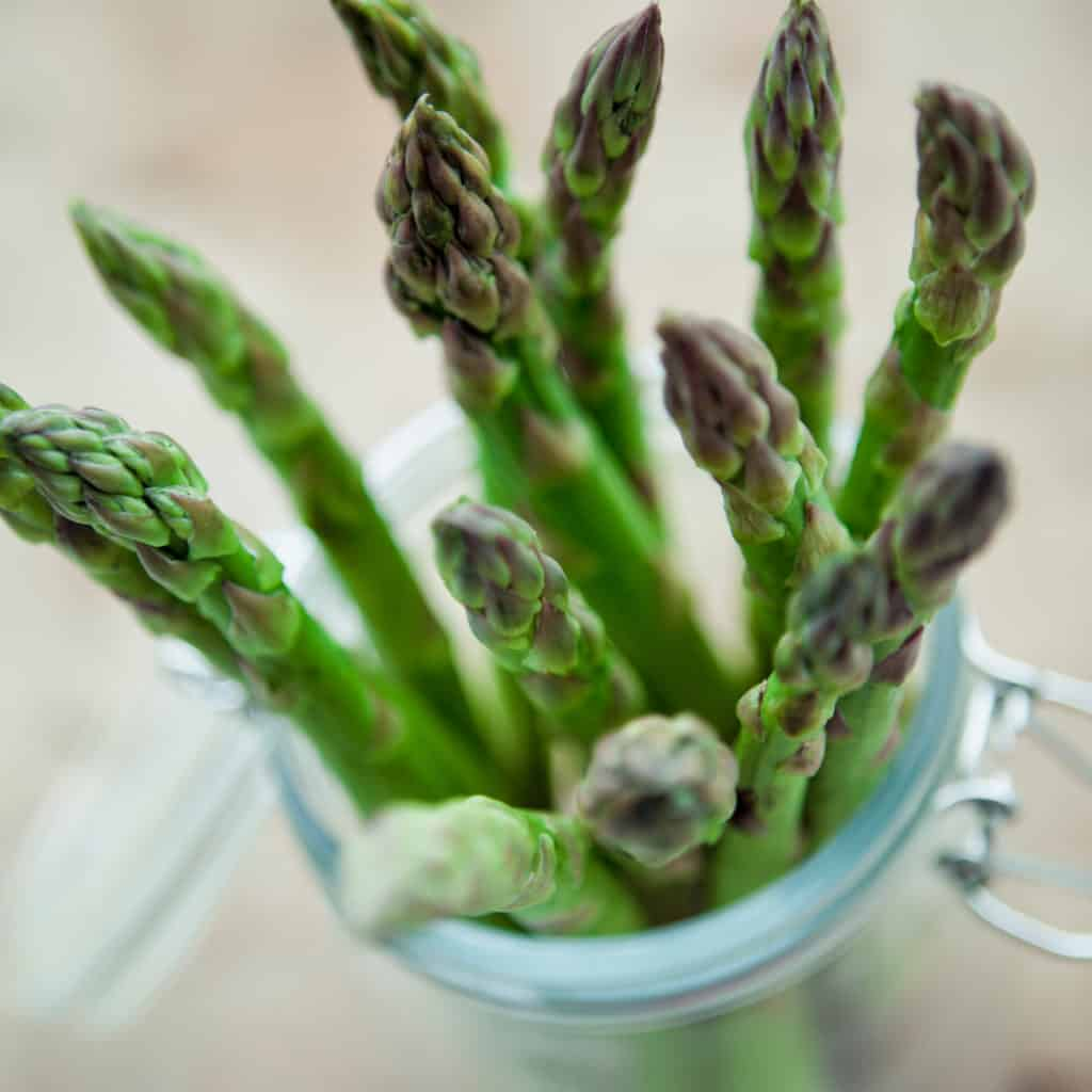 asparagus spears in jar